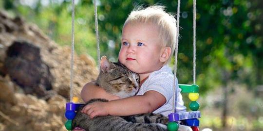 animalele de companie si bebelusii